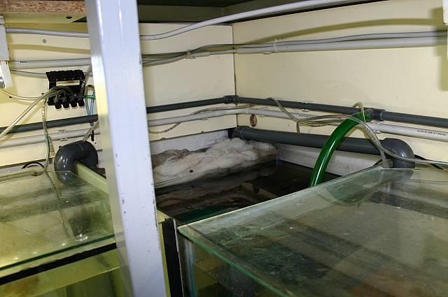 Filterkammer