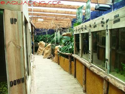 aquarium imperator d amn ville aquadings. Black Bedroom Furniture Sets. Home Design Ideas